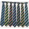 Bushey Meads Shool BMS Striped House Tie ASH BEECH OAK ELM MAPLE SYCAMORE WILLOW Girls Boys Unisex Uniform