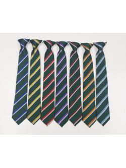Bushey Meads School (BMS) House Tie